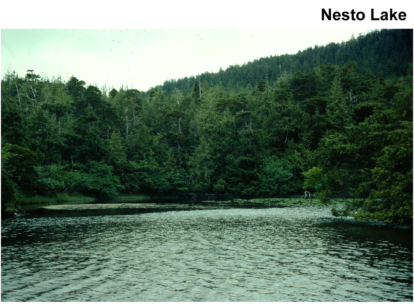 NESTO LAKE