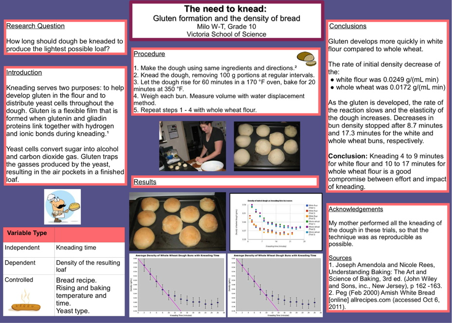 interesting science fair projects